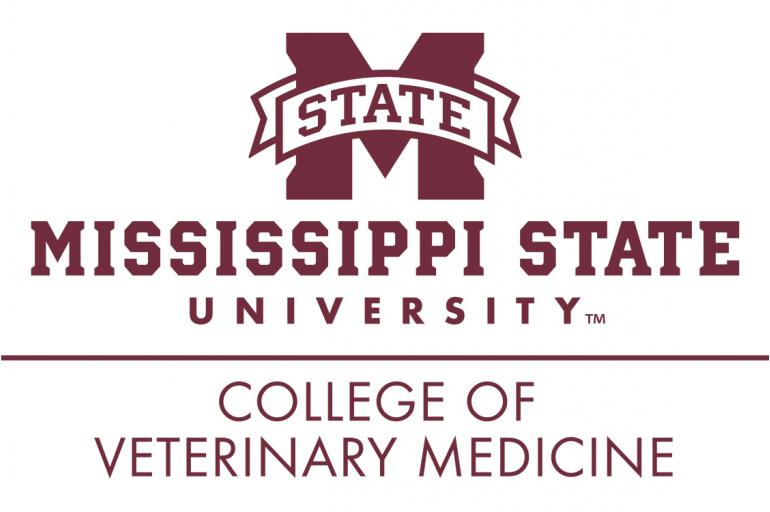 College Of Veterinary Medicine Summer Camp Center For